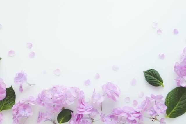 花の写真105